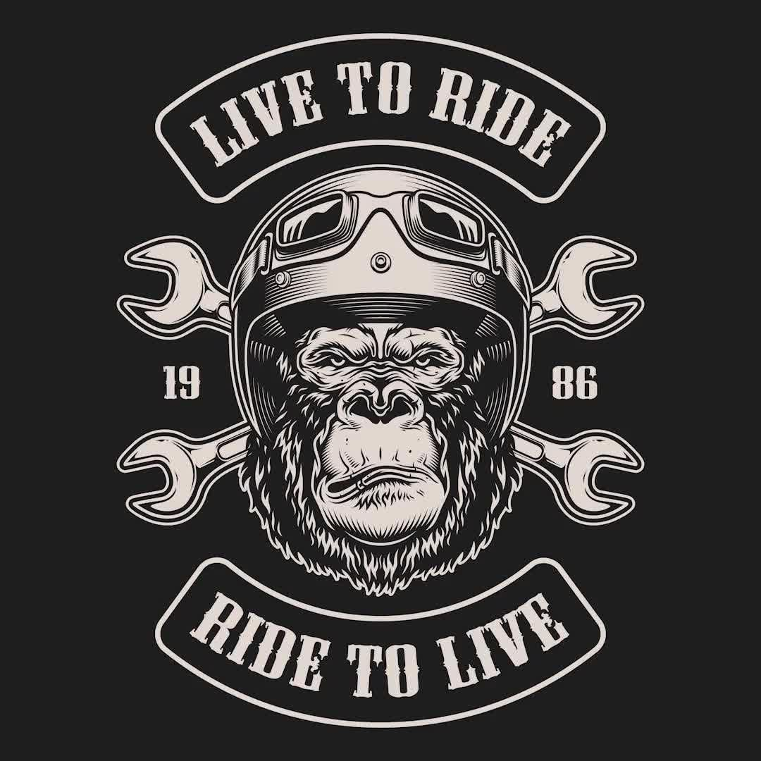 We've created designs for motorcycles' lovers. You'll find a skull, a gorilla, a bear and another animals wearing moto helmets in our t-shirt designs collection. Ready to be printed on any items & surfaces! 100% vector. Download motorcycles' designs on www.dgimstudio.com. #moto #vector #vectorillustration #appareldesign #tshirtdesign #bikers #motorcycle #motorbike
