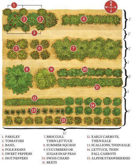 Potager Garden Blogs: How To Start A Garden, Save Money, And Eat Fresh