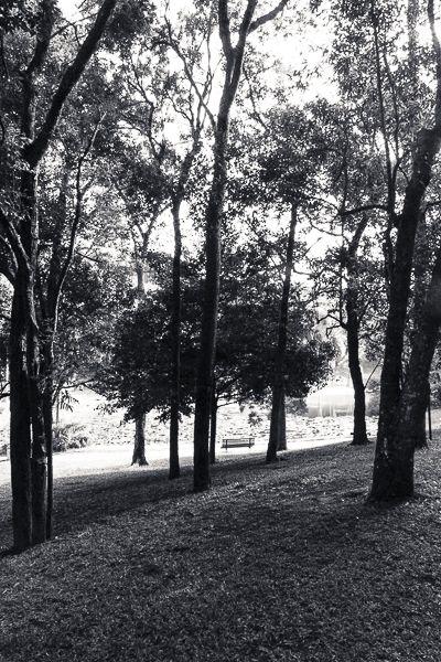 Natureza e Paisagens/ Nature Landscapes - Galeria aye