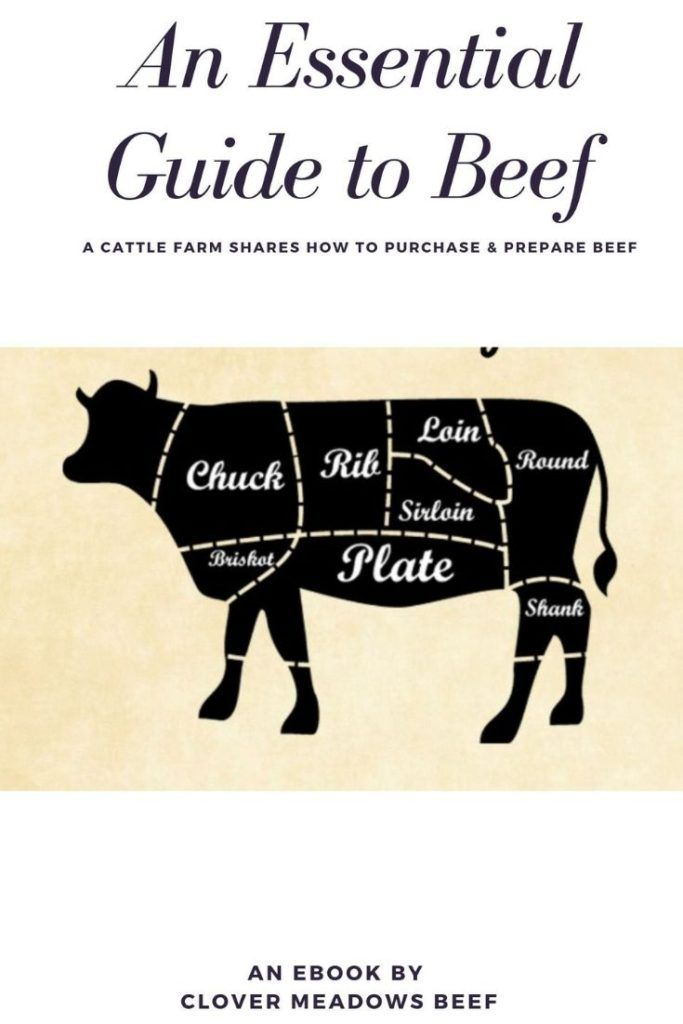 Photo of An Essential Guide to Beef: A Cattle Farm Shares How to Purchase & Prepare Beef – Clover Meadows Beef