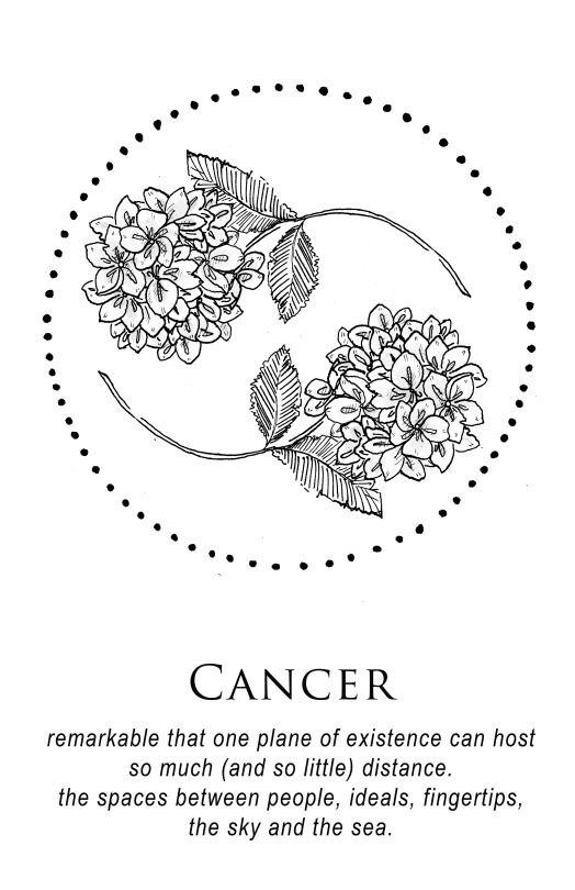 Flowers And Circle Cancer Zodiac Tattoo Cancer Tattoos Zodiac Tattoos