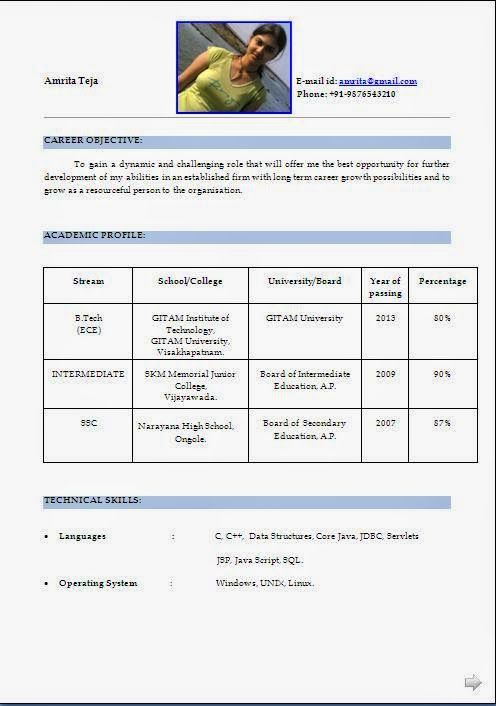 best professional cv template Sample Template Example ofExcellent - profile template word