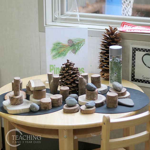 How To Set Up Your Preschool Science Center Preschool