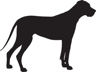 Great Dane Silhouette Great Dane Dogs Dog Silhouette Great Dane