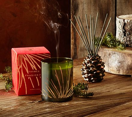 Frasier Fir is amazing!! Available in stores at Dwellings in lewisburg and State College PA and online at www.dwellingsathome.com