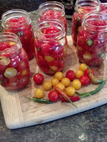 HomeGrown Christmas Day 10 (With images) | Pickled ...