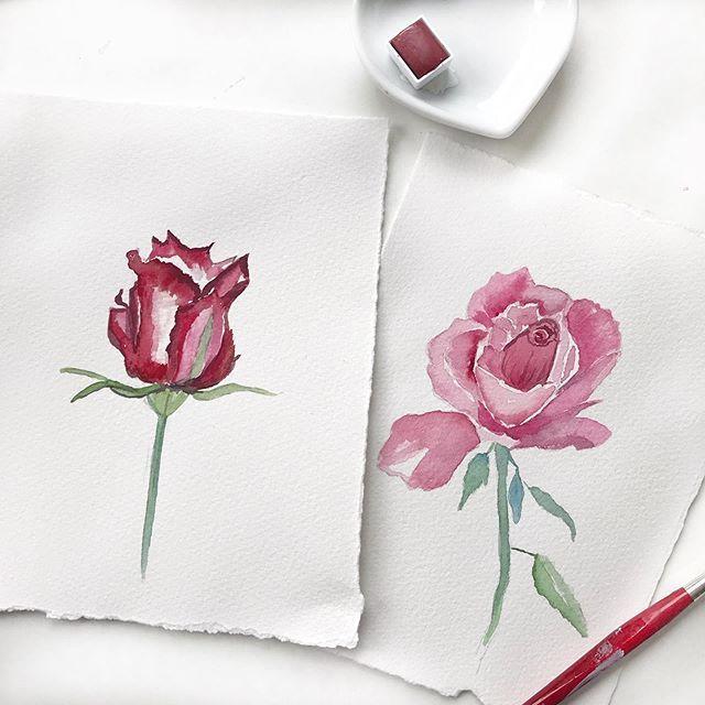 La vie en rose... #watercolor #watercolorpainting #watercoloring #watercolorillustration #roses #aquarelle #aquarellart #illustrationoftheday #illustrationoftheday #watercolor_blog