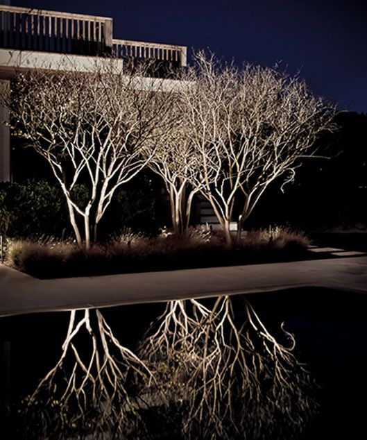 Gin Lane Residence by Christopher LaGuardia Light garden - iluminacion jardin