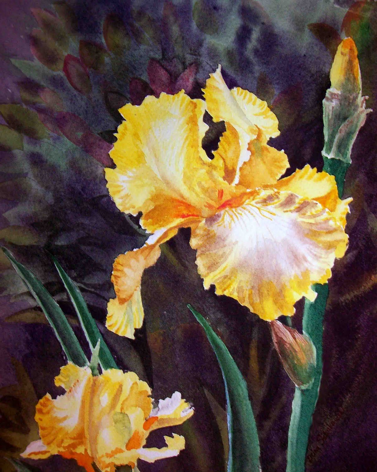 Watercolor paintings of a iris flower yahoo image search results watercolor paintings of a iris flower yahoo image search results izmirmasajfo