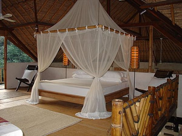 Bamboo Canopy Bed Diy Google Search Tropical Bedrooms