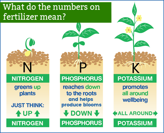 What Do The Numbers On Bags Of Fertilizer Mean Find Out With This Helpful Infographic Plant Nutrients Fertilizer Manure Composting
