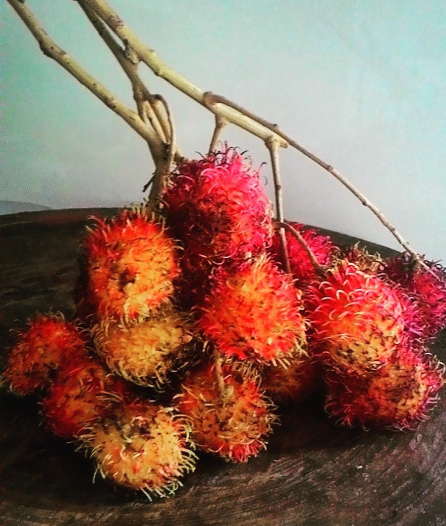 Rambutan season has begun! I foresee many a juicy delightful moment peeling these yummy morsels! #yummy  #rambutan #fruit #tropical #digitalnomad #wanderlust #exploring #invigoratedliving