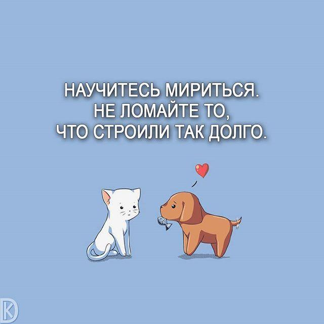 картинки для примирения с любимым человеком прикольные рекомендуем приобретению
