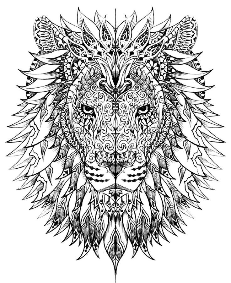 - Pin On Wild Cat (lion / Tiger) Miscl