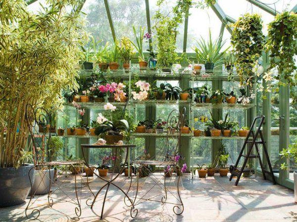 Gewächshaus Wintergarten Einrichten Coole Idee | Im Gewächshaus ... Pflanzen Wintergarten Design Ideen