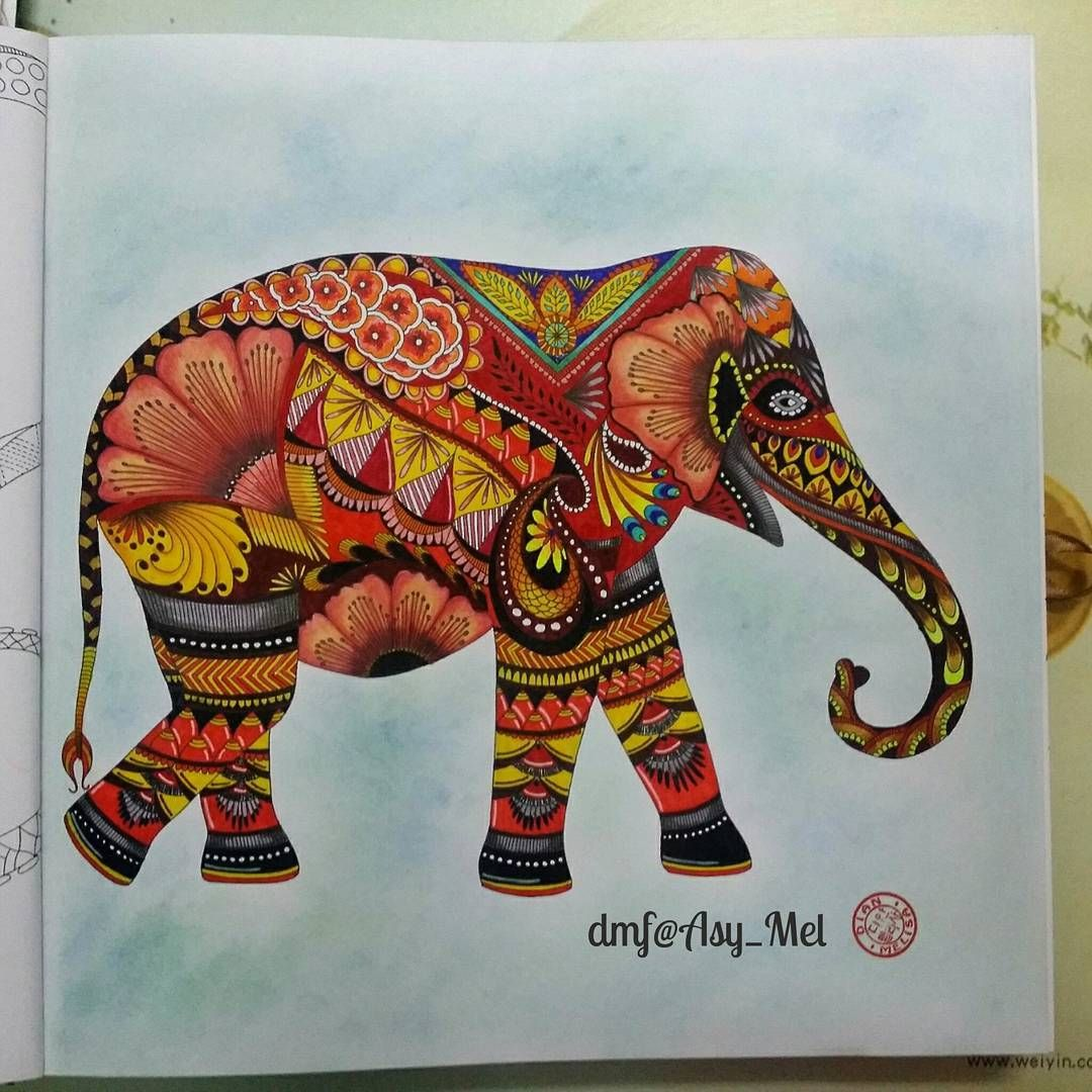 My First Millie Marottas Animal Kingdom Milliemarotta FC Pen Colleen Pencil Colours Soft Pastel For