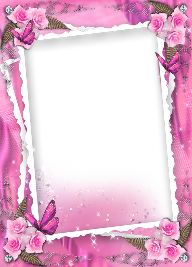 Beautiful Pink Transparent Frame With Roses Flower frame