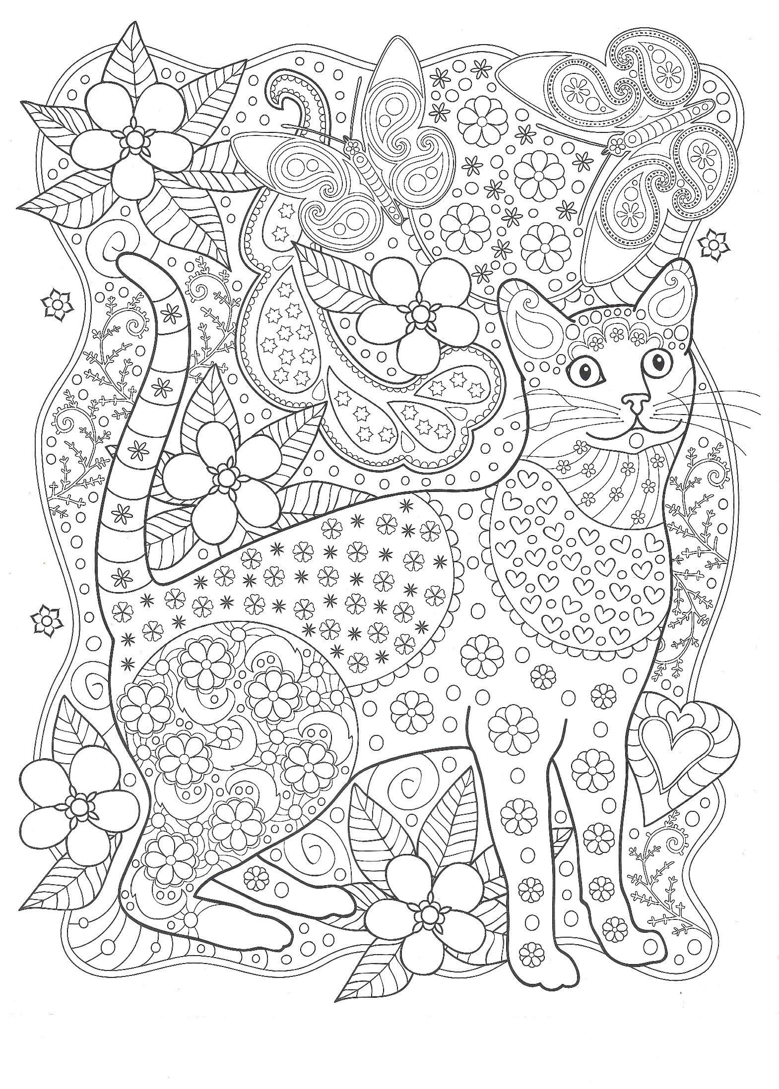 серьезной покупкой картинки для раскрашивания кошки релакс расстояние между