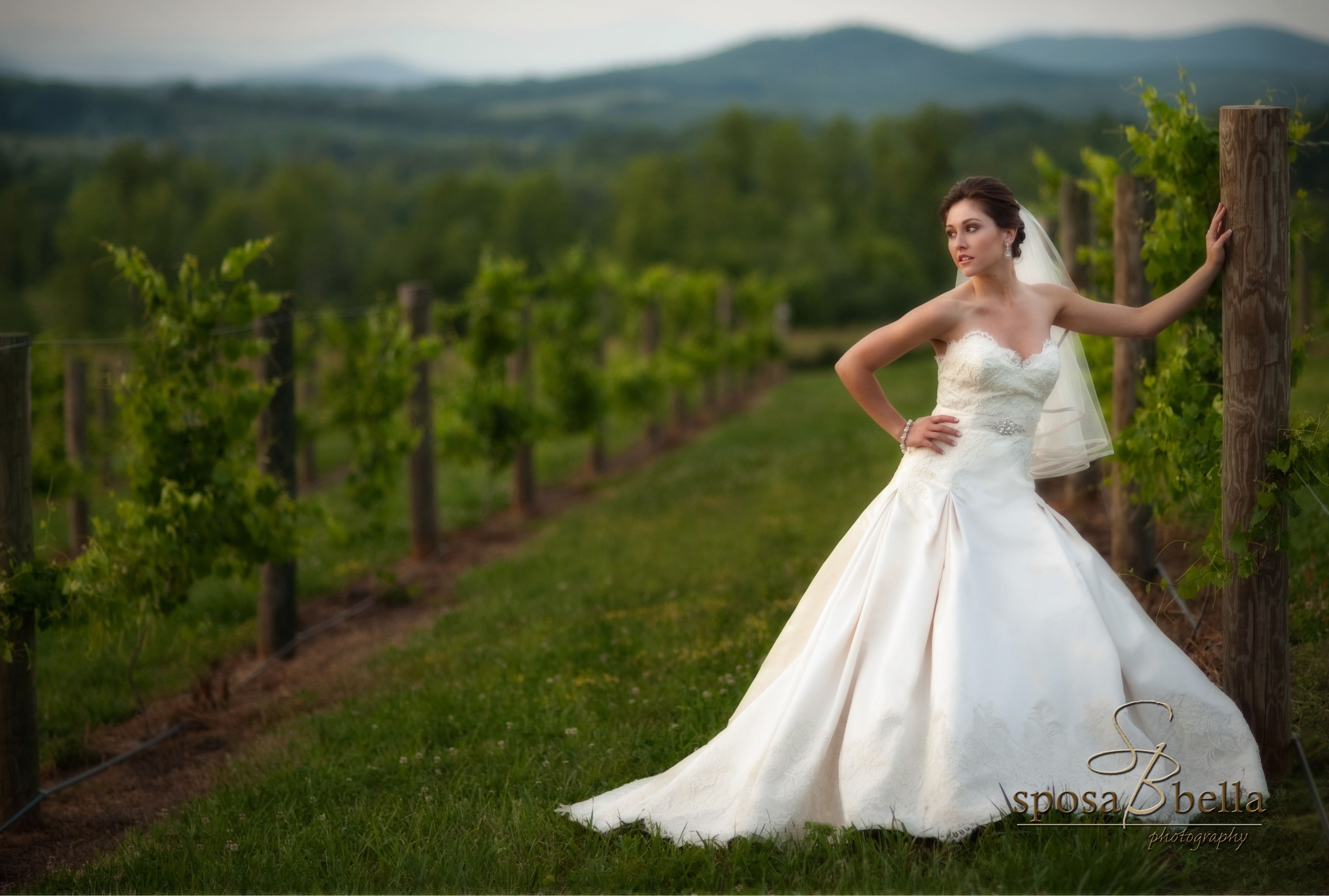 greenville sc weddings, vintage lace drop waist ball gown wedding ...