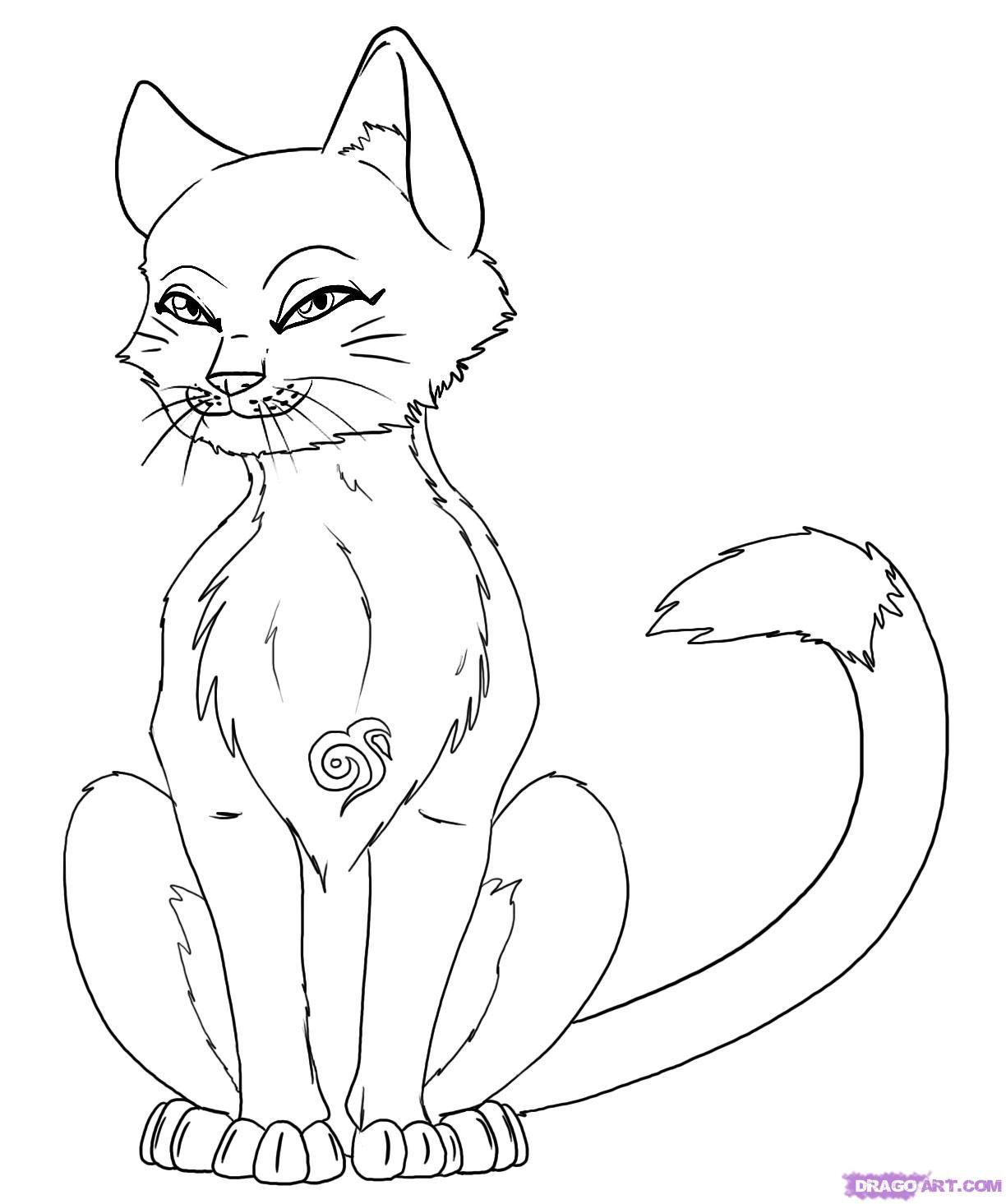 luxus warrior cats ausmalbilder kostenlos  top kostenlos