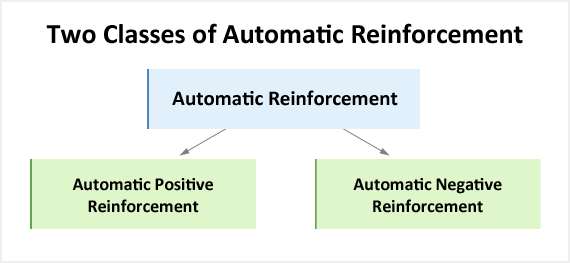 Automatic reinforcement shown broken down into positive and negative ...