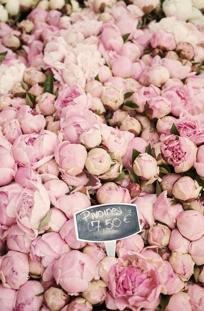 Paris peonies paris pinterest peony and walls paris peony photograph pink peonies at the market large wall art floral french home decor mightylinksfo