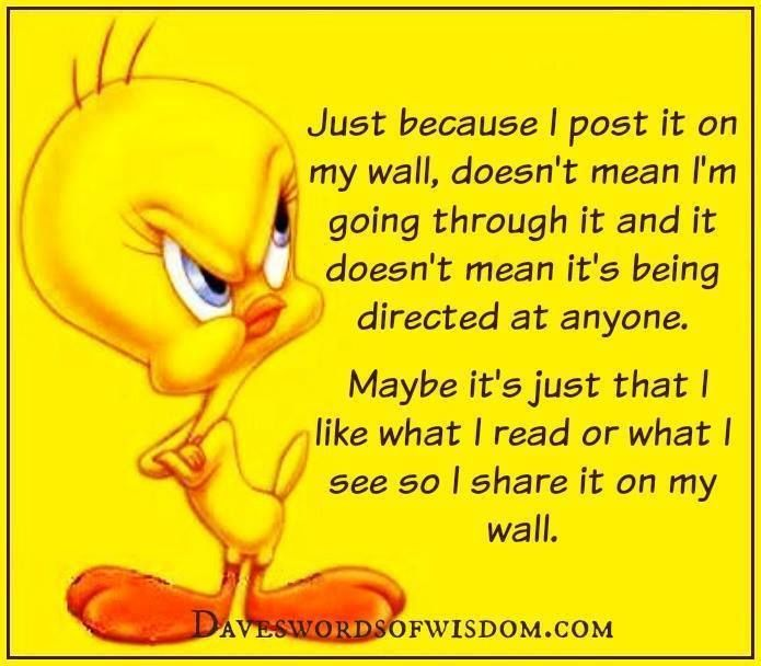 Just Because I Post It To My Wall Sarcastic Quotes Funny Quotes Angry Quote