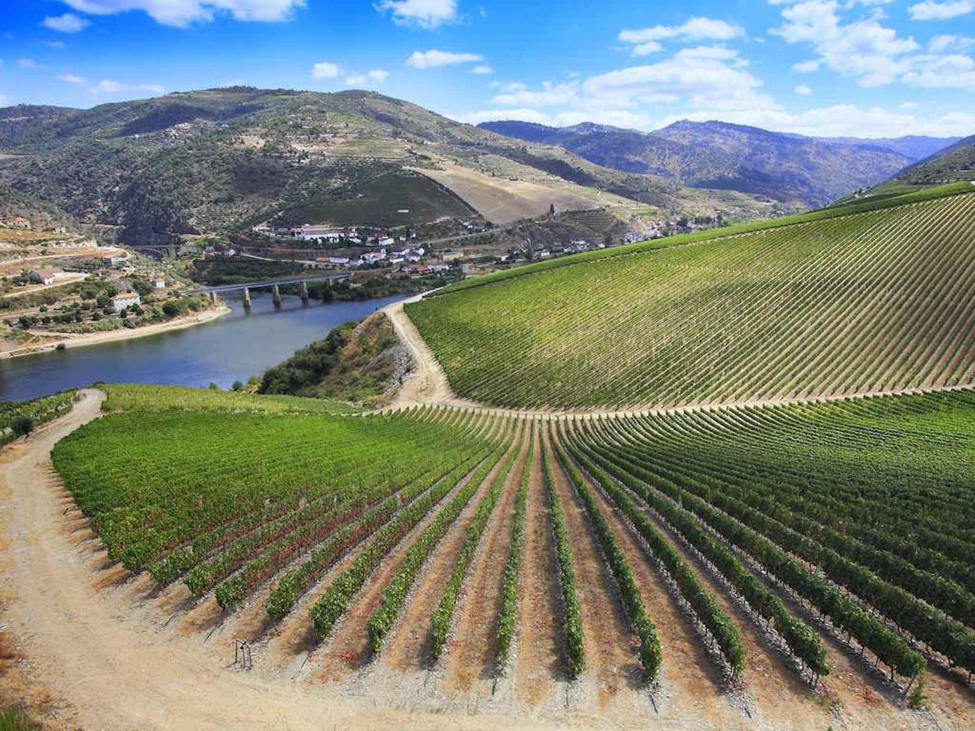 Ribera Del Duero Wine Region Introductory Guide Urlaub In Vino