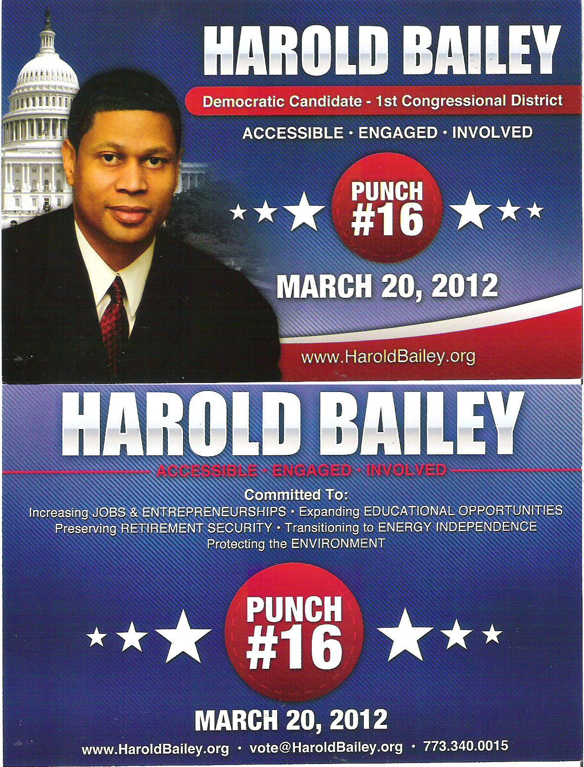 Examples Of Political Campaign Flyers  Invitation Templates
