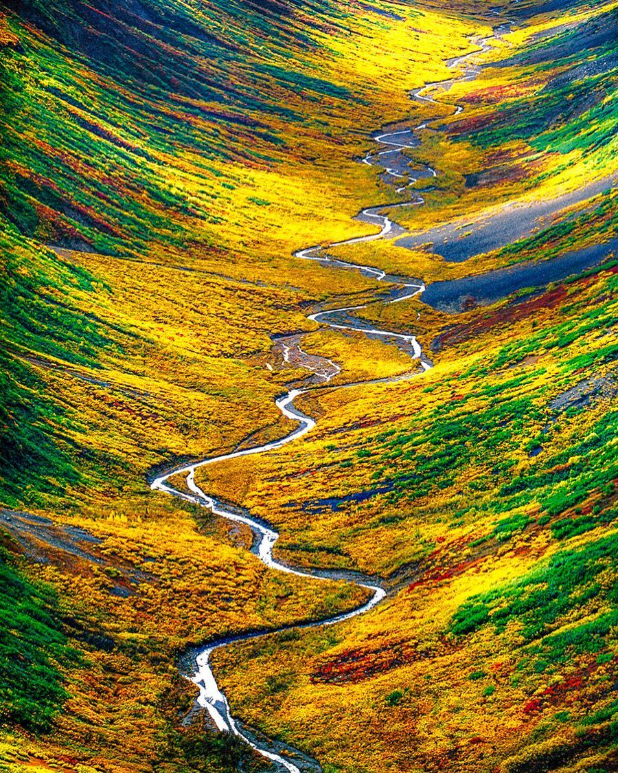 National Geographic Travel On Instagram Photo By Franslanting Fall Colors Stain The Sides Of A Remote Valley In Wrangell St El Nature Frans Lanting Wrangell