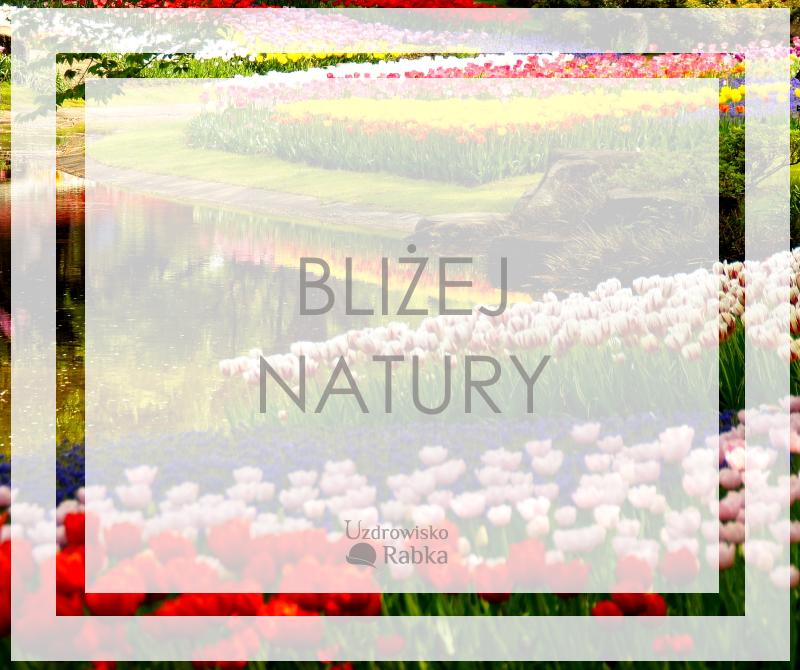 Lubisz być blisko natury? Obserwuj naszą tablicę! :)