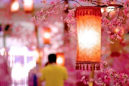Cherry Blossom Lantern, Kuala Lumpur, Malaysia