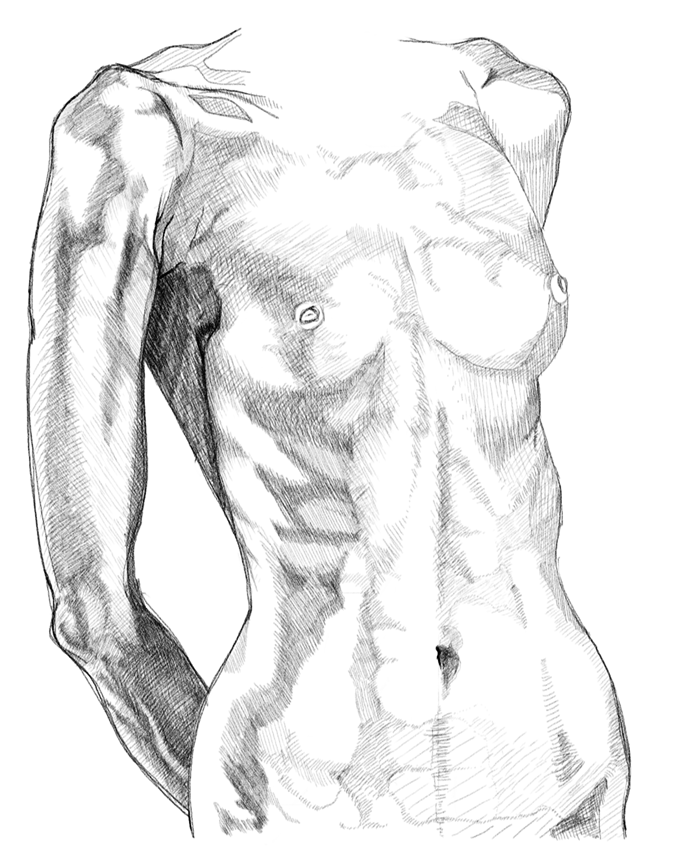 Female Anatomy Study of drawing lesson and tutorials with video ...