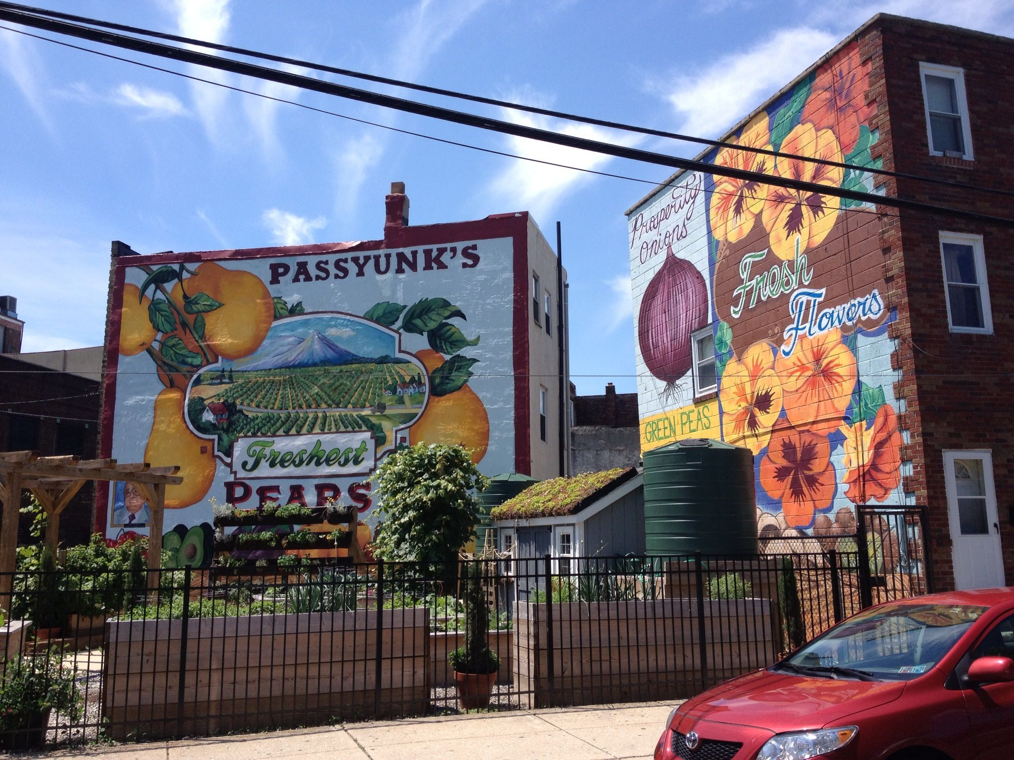 Outdoor murals at the corner of 9th Street South and East
