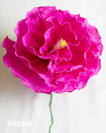 Large Crepe Paper Flower Mexicantissueflowers Paper Flowers