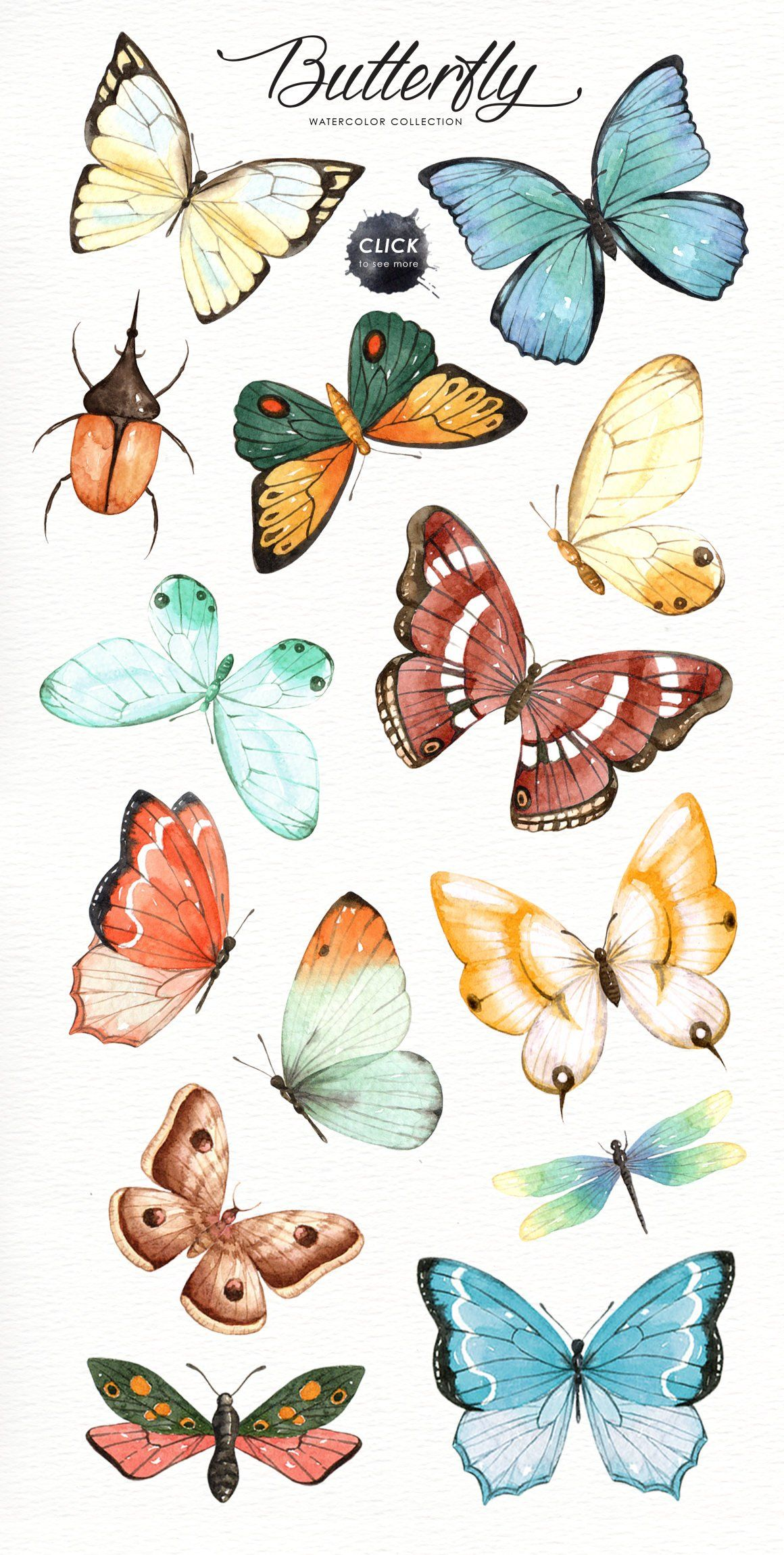 Photo of Butterfly Watercolor Collection, Butterflies Cliparts, Digital Butterfly, Watercolor Cliparts, Party Cliparts, Moth Beetle Ladybug Dragonfly