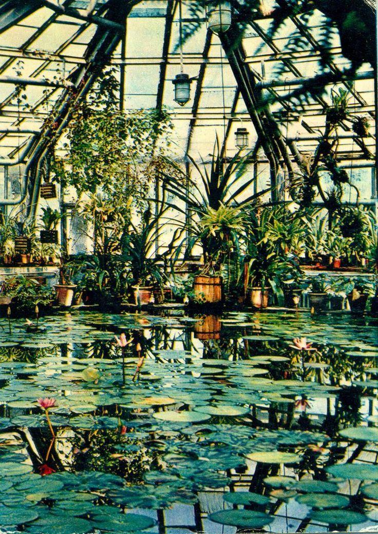Herbs Garden · Orly Khon Boston Botanical Plant Inspiration