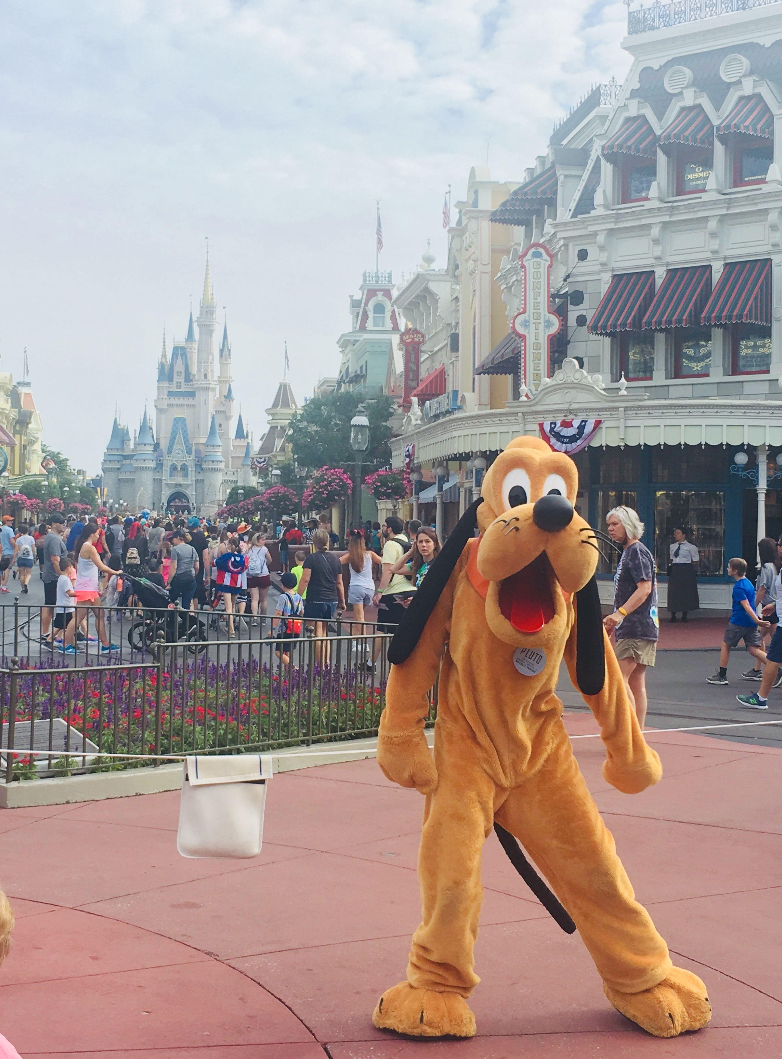 Disney world images pinterest