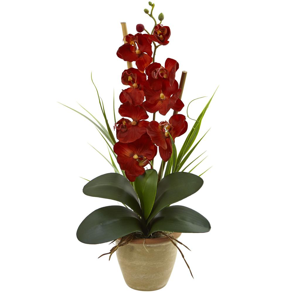 Phalaenopsis orchid harvest silk arrangement browntan