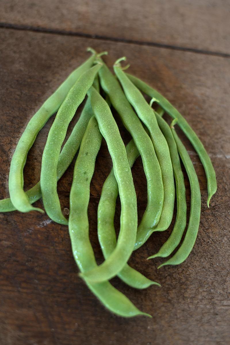 Kentucky Wonder Pole Bean (66 Day, Heirloom)