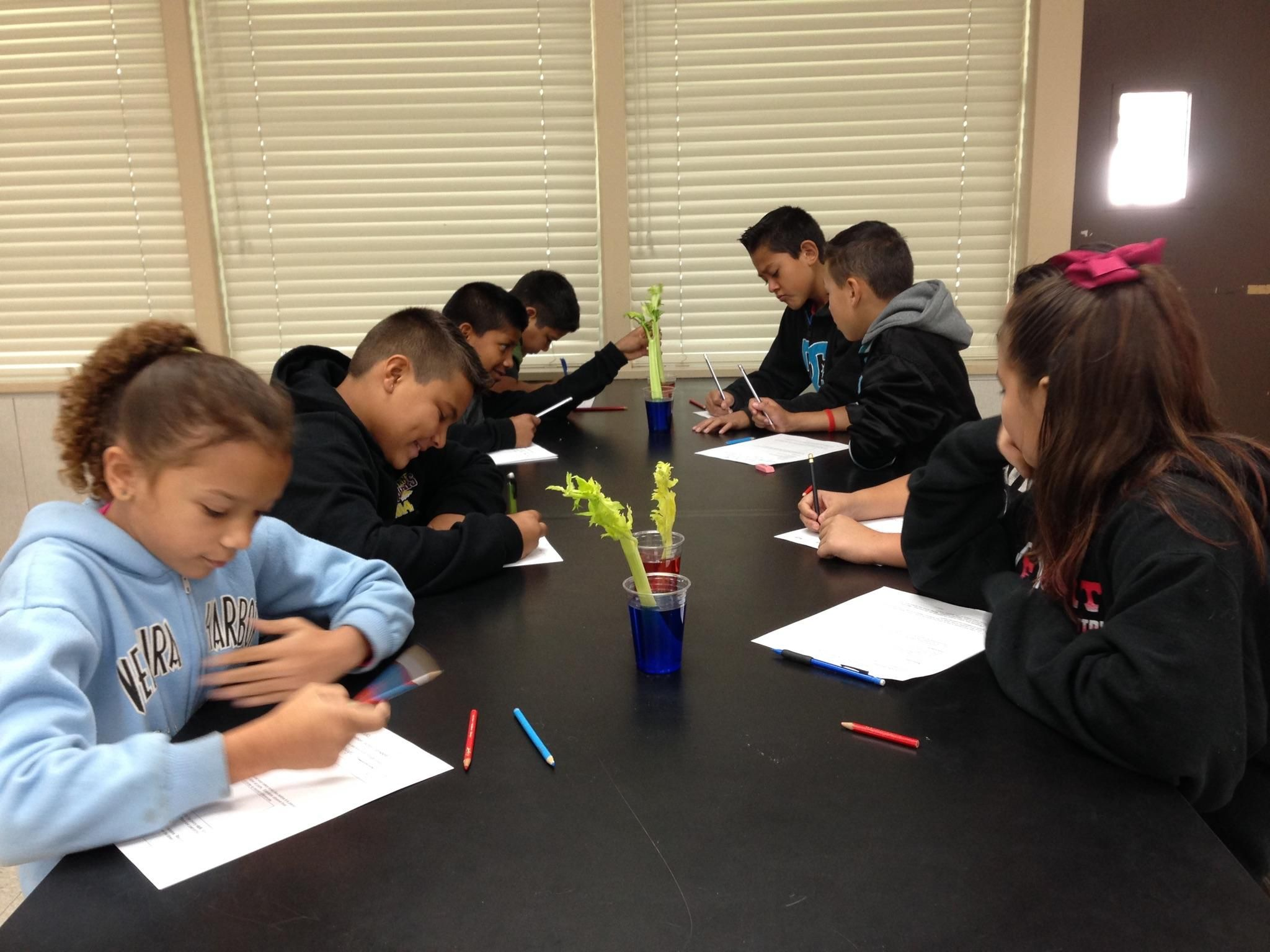 Peachland School Students Regularly Conduct Experiments In