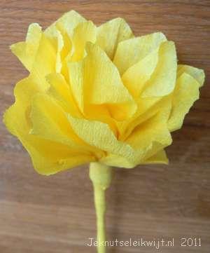 bloem crepepapier knutselen bloem
