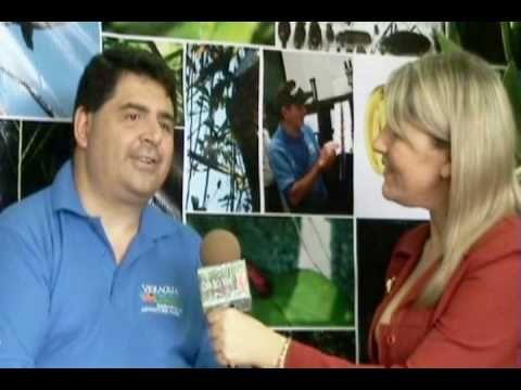 Veragua Rainforest Research & Adventure Park doing jungle research with InBio Parque in Costa Rica - YouTube