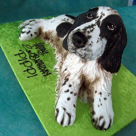 3d Spaniel Dog Cake Living Things 3d Cakes Birthday Cakes