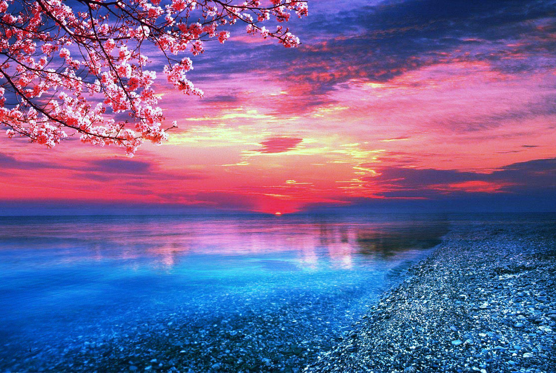 Looks so much like a painting in Japan 🌸 Ocean wallpaper