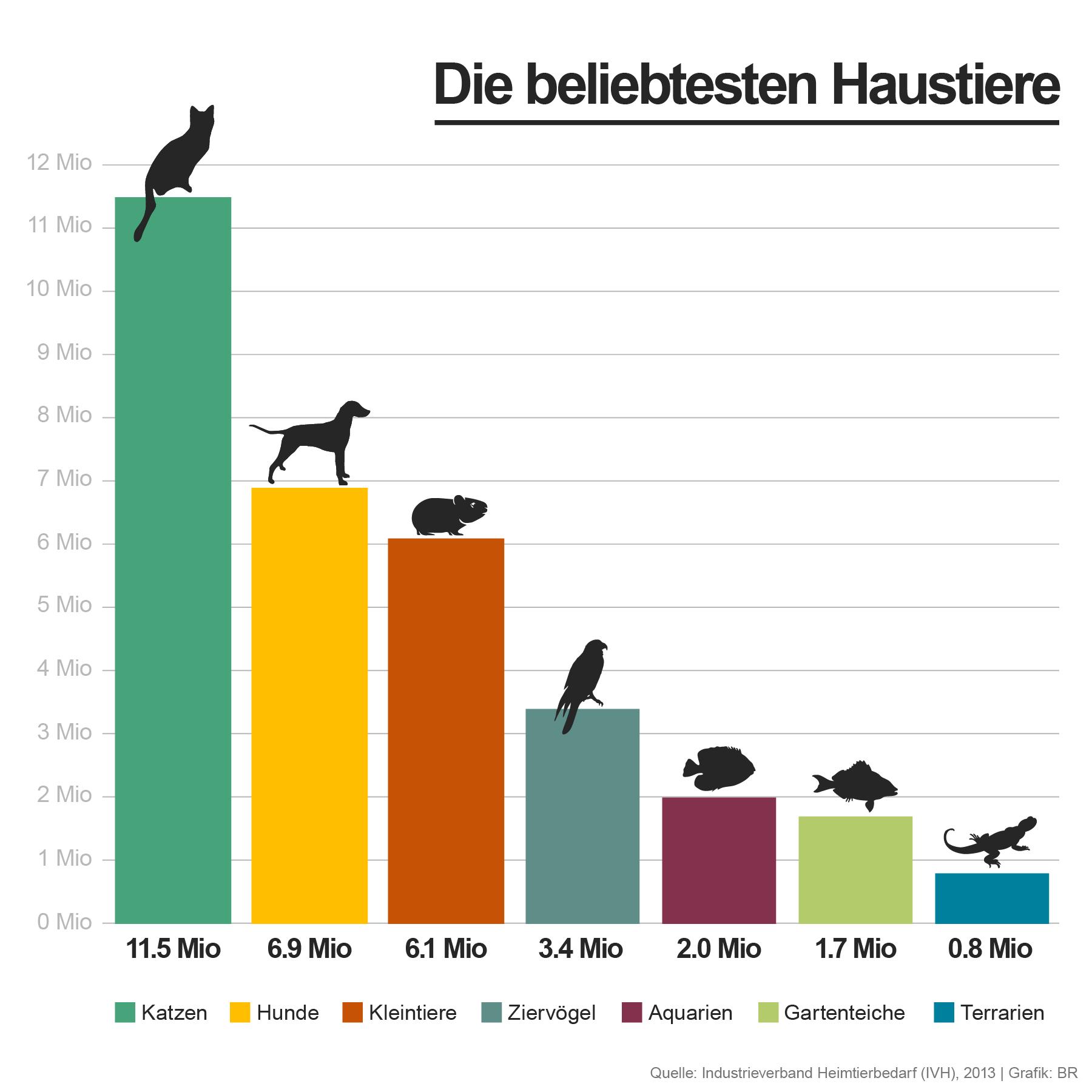 Infografik - Die beliebtesten Haustiere | Bild: BR ...
