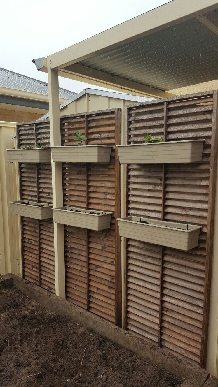 We converted these louvers into a vertical herb garden. Also covers the shed and frees up the garden bed for spring veges!