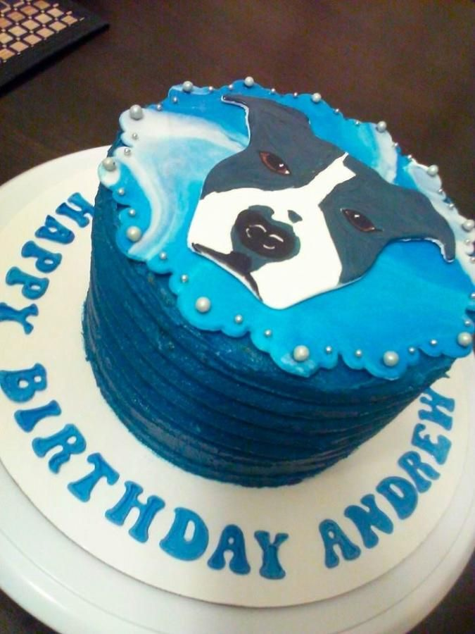 Surprising Hand Painted Dog Cake For A Human Birthday By Personalised Birthday Cards Petedlily Jamesorg