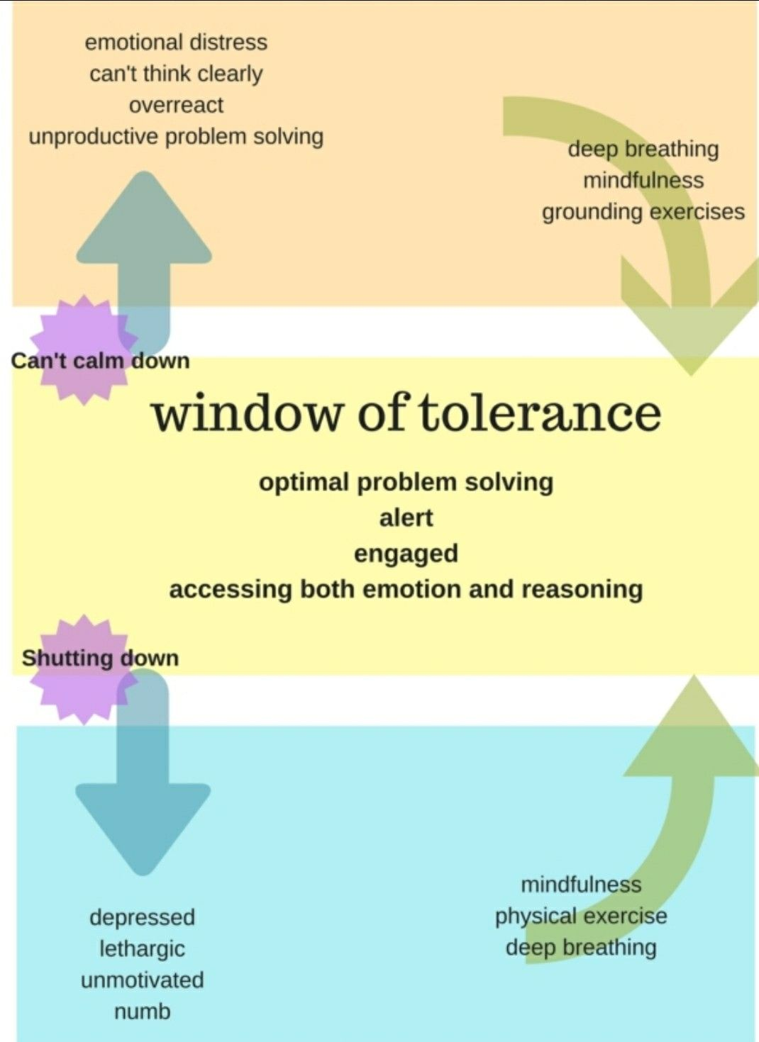 Window Of Tolerance And Sensory Tools Use