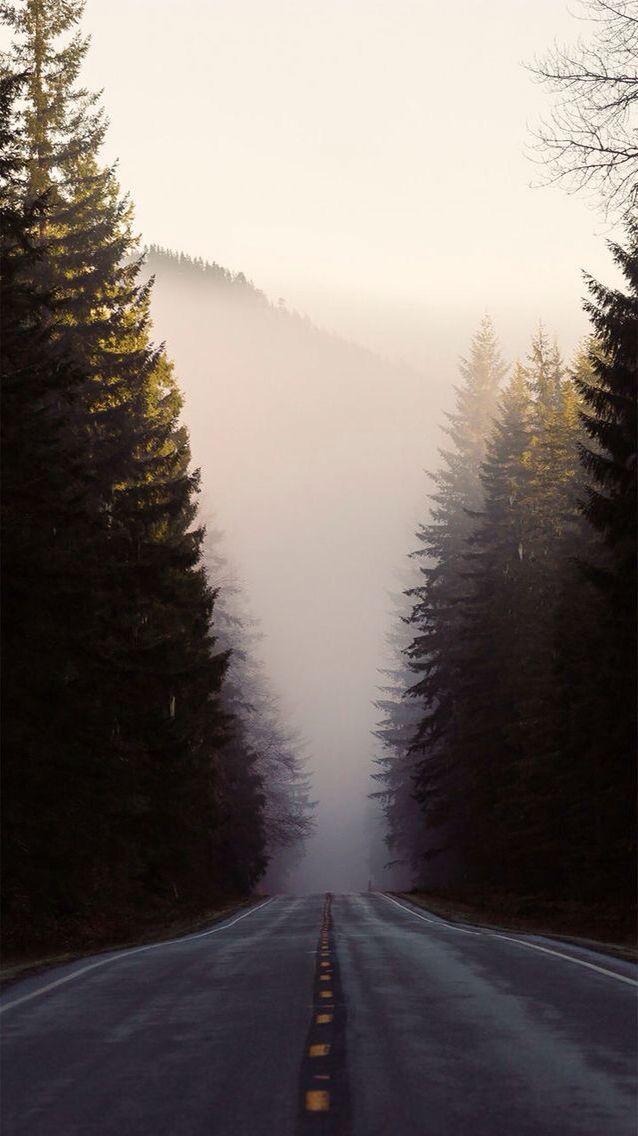 Wallpaper #road#nature